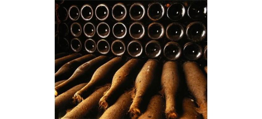 Основные правила хранения вина